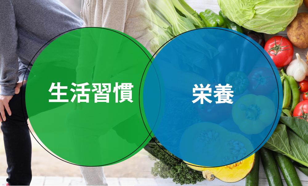 生活習慣と栄養